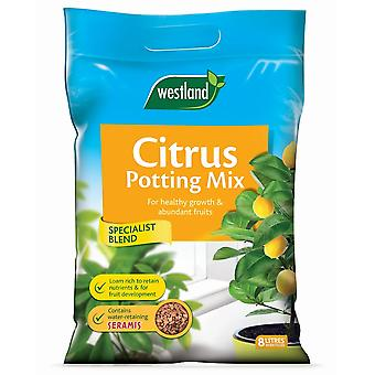 Westland Citrus Potting Mix 8L