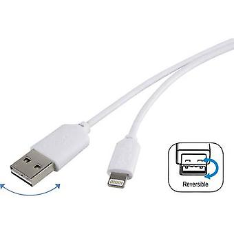Renkforce iPad/iPhone/iPod Data cable/Charger lead [1x USB 2.0 connector A - 1x Apple Dock lightning plug] 1.00 m White