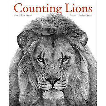 Comptage des Lions