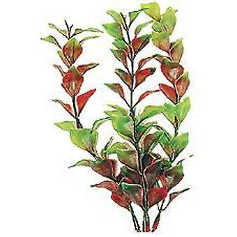 Tetra Red Ludwigia Plus-size (Fish , Decoration , Artificitial Plants)