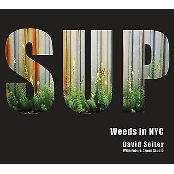 Spontaneous Urban Plants  Weeds in NYC by David Seiter & With Future Green Studio