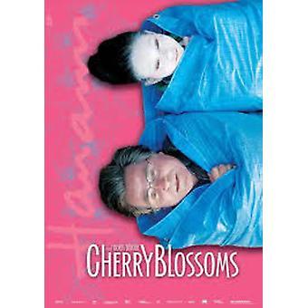 Cherry Blossoms [DVD] USA import