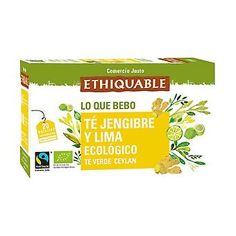 Green Tea with Ginger and Lime Bio 20 infusion bags of 36g
