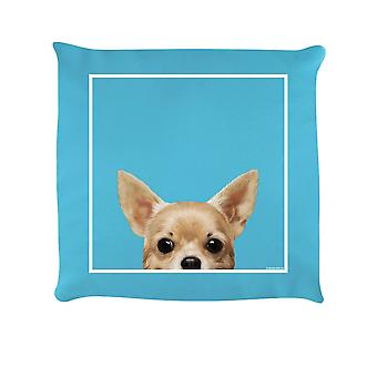 Inquisitive Creatures Chihuahua Filled Cushion