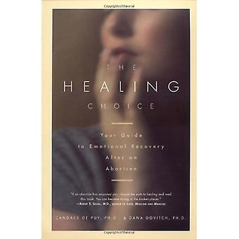 The Healing Choice by De Puy - 9780684831961 Book