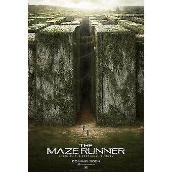 The Maze Runner Movie Poster (27 x 40)