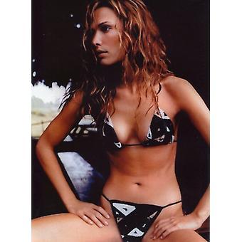 Molly Sims Photo - Wearing a B&W Bikini (8 x 10)