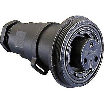 Bulgin PX0737/S - 2 Polo IP68 conector do soquete, padrão Buccaneer, montagem de cabo Flex em linha, 10A