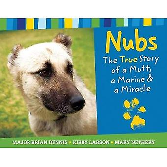 Nubs: The True Story