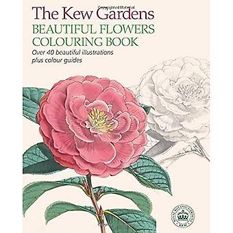 Kew Gardens vackra växter Målarboken (målarböcker)