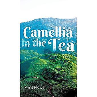 Camellia in the Tea