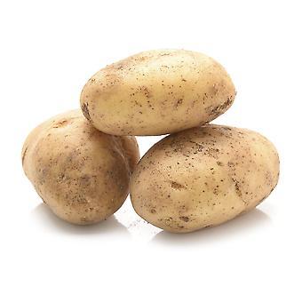 Elveden Fresh British Baking Potatoes 60's
