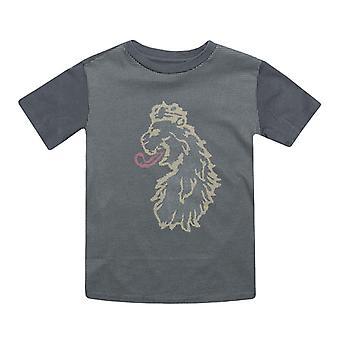Boy's Luke 1977 Junior Spliono T-Shirt in Grey
