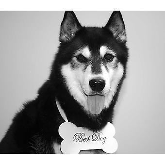 Beste Hunden Bryllup Tegn