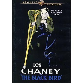 Blackbird (1926) [DVD] USA import