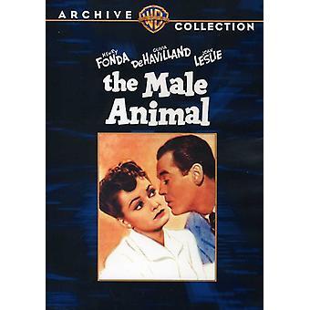 Mannelijke dieren [DVD] USA importeren