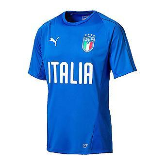 2018-2019 Włochy Puma szkolenia Jersey (niebieski)