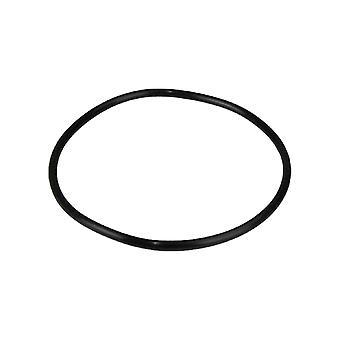 Hayward SPX1500P SIL Cover O-Ring