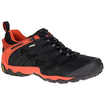 Merrell Chameleon 7 Gtx Goretex J98291 trekking all year men shoes