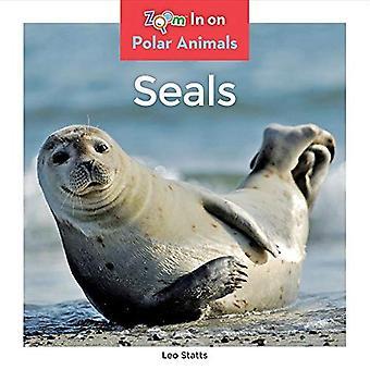 Zeehonden (Polar dieren)