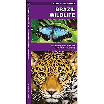 Brazil Wildlife (Pocket Naturalist Guide)