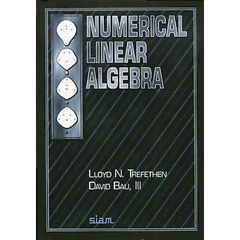 Numerical Linear Algebra by Lloyd N. Trefethen - David Bau - 97808987