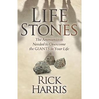 Life Stones - The Ammunition Needed to Overcome the Giants in Your Lif