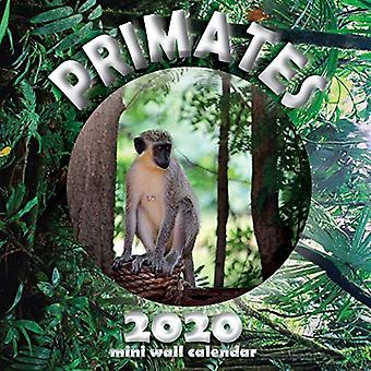 Primates 2020 Mini Wall Calendar