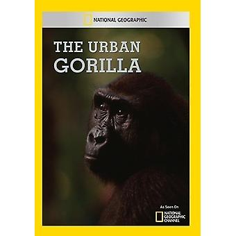 Urban Gorilla [DVD] USA import