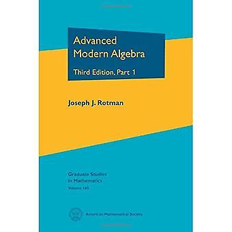 Advanced Modern Algebra: Part I (Graduate Studies in Mathematics)