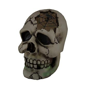 Color Changing LED Lighted Cracked Skull w/Web Statue