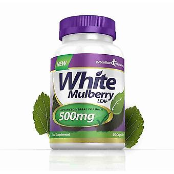 White Mulberry Leaf Extract 500mg - 120 Capsules - Sugar Controller - Evolution Slimming