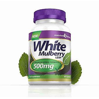 Hvid morbær Leaf Extract 500mg - 60 kapsler - sukker Controller - Evolution slankende