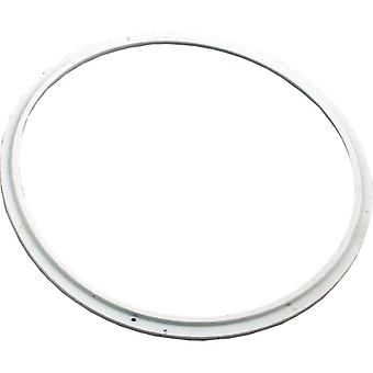 Pentair 78880200 Silicone Seal Lens for AquaLumin Pool or Spa Light