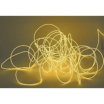 Eurolite oranje 2 m licht snoer met afstandsbediening
