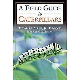 Orugas en el campo y jardín - una guía del campo a la oruga de la mariposa de América del norte