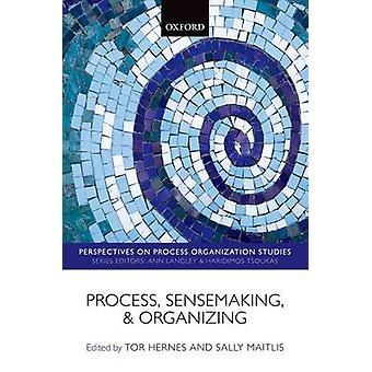 Proceso de sensemaking y organización por Edited by Tor Hernes & Edited by Sally Maitlis