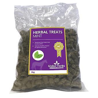 Global Herbs Herbal Traite menthe 3kg