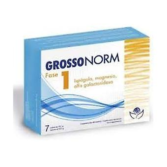 Grossonorm Phase 1 7 units