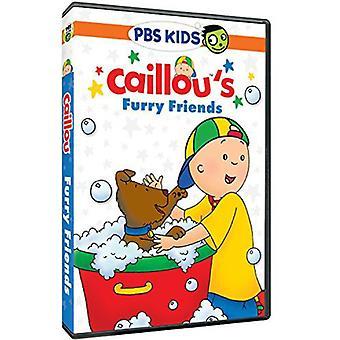 Caillou: Caillous pelzigen Freunde [DVD] USA importieren
