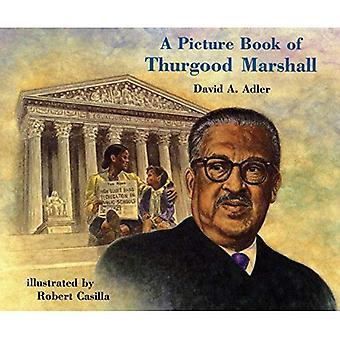 Een prentenboek van Thurgood Marshall (prentenboek biografieën)