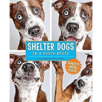 إيواء الكلاب في كشك صور من جينيفر شوستر-9781449477844 ب