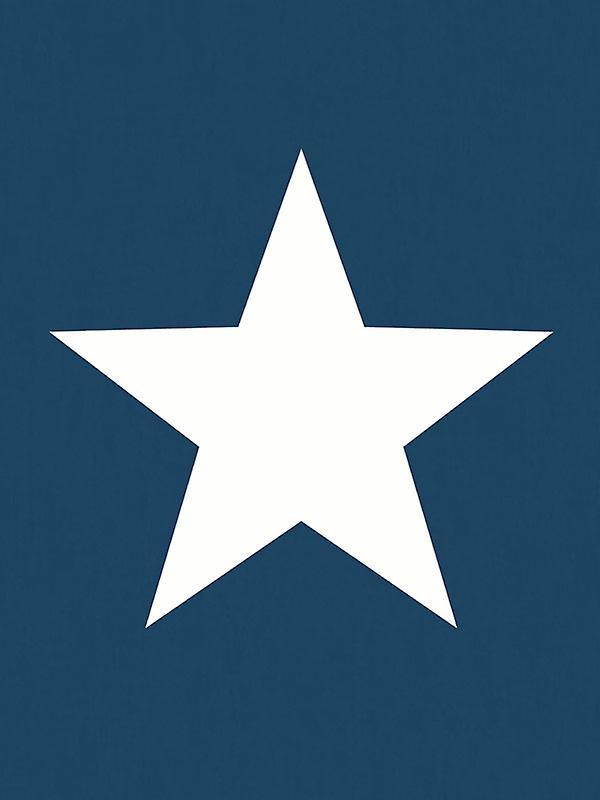 Star Wallpaper White on Navy - World of Wallpaper 273471