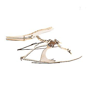 Crafts - pterodactyl skeleton - model kit raw wood