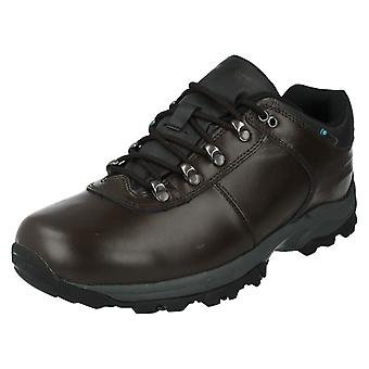 Hombres Hi-Tec Zapatos Casual Estilo - Eurotrek II Bajo