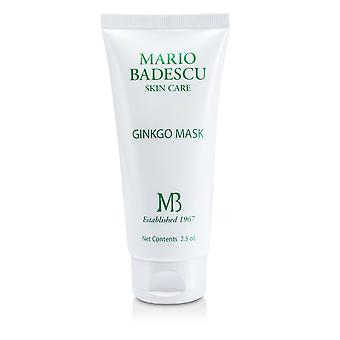 Ginkgo mask for combination/ dry/ sensitive skin types 177251 73ml/2.5oz