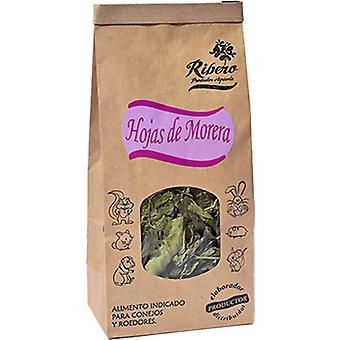 Ribero Mulberry Leaves (Small pets , Dry Food and Mixtures)