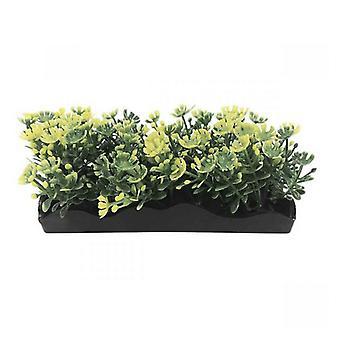 פן פלאקס צהוב חבורה צמחים קטנים - ספירה 1