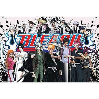 Bleach Anime Cast Poster affisch Skriv