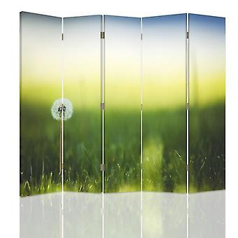 Divisor de habitación, 5 paneles, doble cara, 360o giratorio, lona, diente de león en hierba verde
